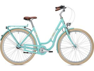 bike7-300x227